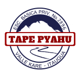 version-actual-colegio-tape-pyahu-logo-png